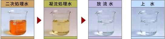 二次処理水から凝沈処理水、放流水と処理毎に水が透明になっていきます。